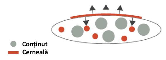 Migratie în fază gazoasă